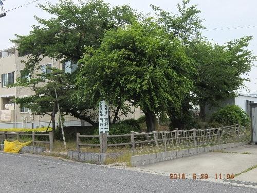 Dscf3571