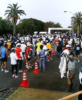 フルマラソン組