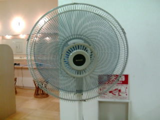 扇風機、最高!