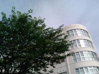 今日は良い天気