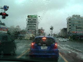 今日は台風
