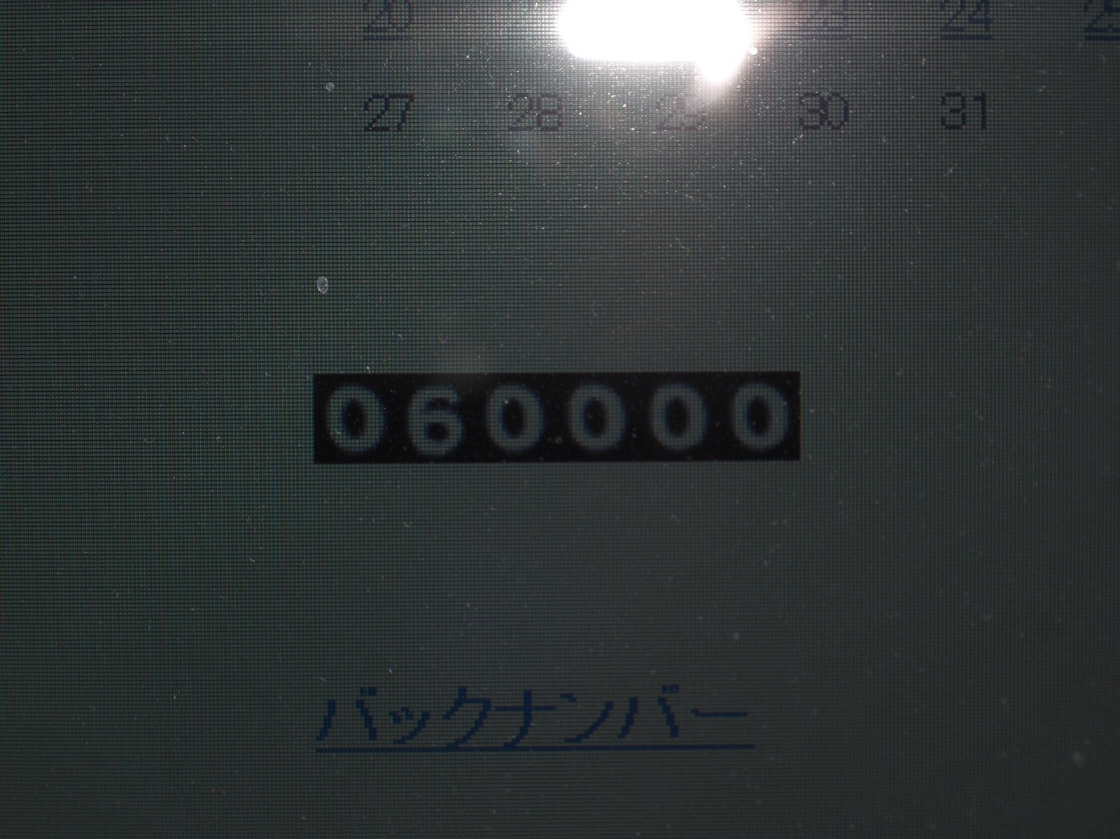 Cimg00391