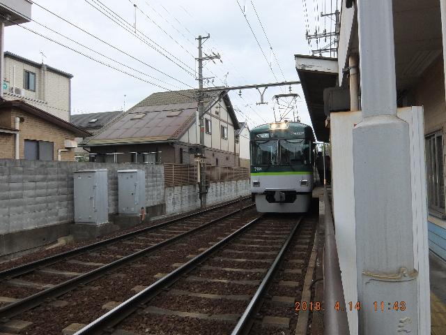 Dscf1231